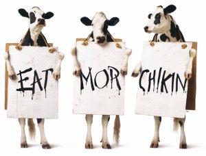 3-Cows-lg